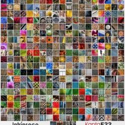 Mosaico de la serie Intrínseco